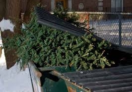 Christmas waste from your business
